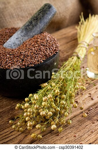 Bunch of flax plants bonded by natural cord - csp30391402