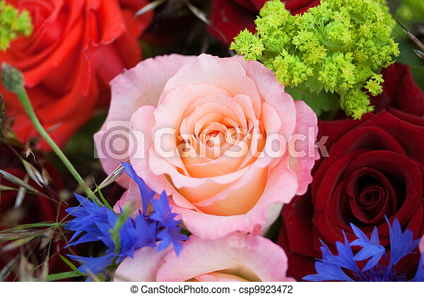 Bunch of flowers with roses - csp9923472
