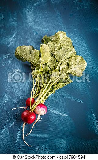 Bunch of fresh radishes - csp47904594