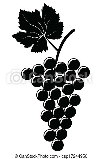 Bunch of grapes - csp17244950