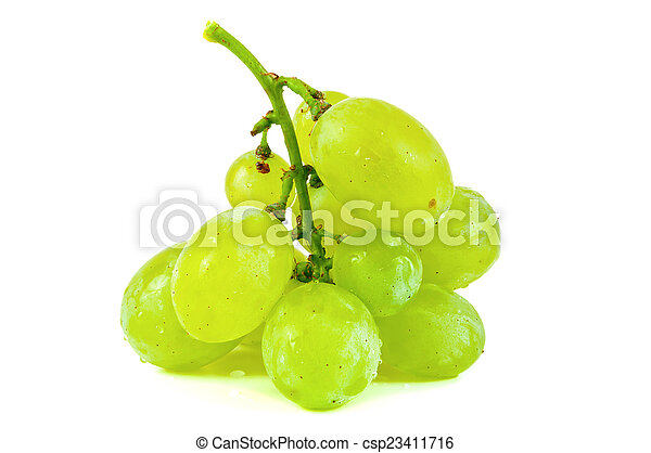Bunch of grapes on white background - csp23411716