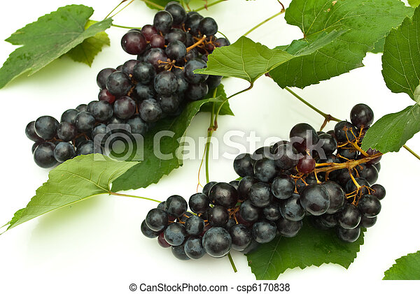 Bunch of grapes on white background - csp6170838