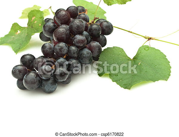 Bunch of grapes on white background - csp6170822