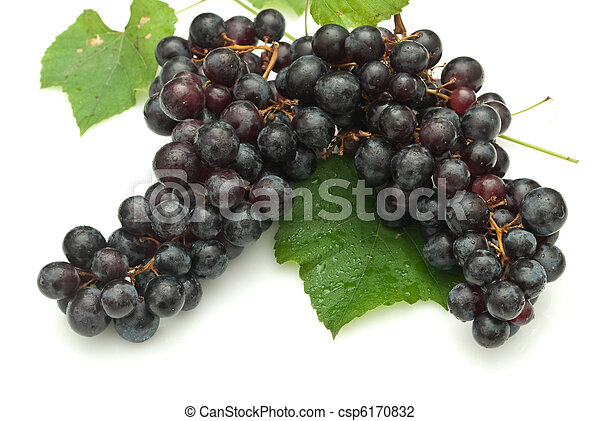Bunch of grapes on white background - csp6170832