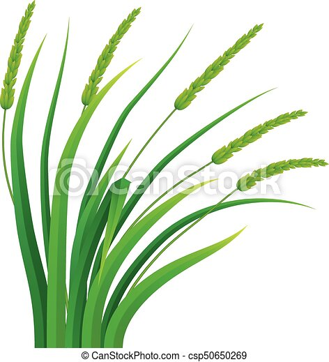 bunch of grass icon realistic style bunch of grass icon realistic rh canstockphoto com