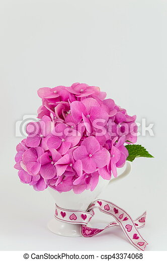 Bunch of hortensia pink flowers in a vase on white background bunch of hortensia pink flowers in a vase csp43374068 mightylinksfo