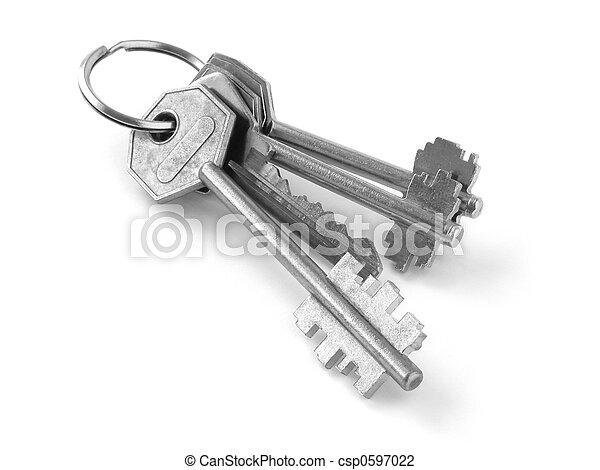 bunch of keys 1 - csp0597022