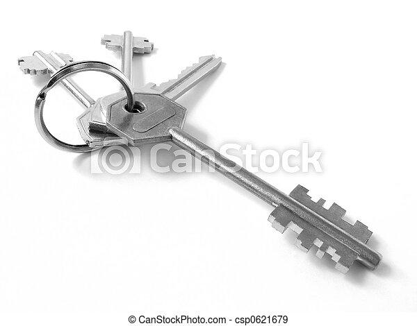 bunch of keys 3 - csp0621679