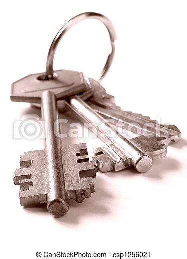 bunch of keys - csp1256021