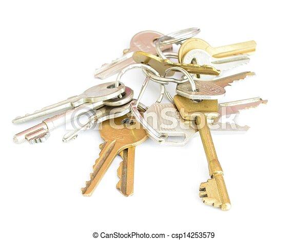 bunch of keys - csp14253579