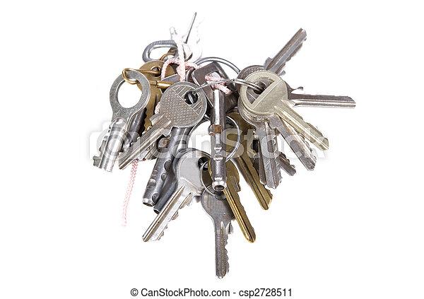bunch of keys - csp2728511