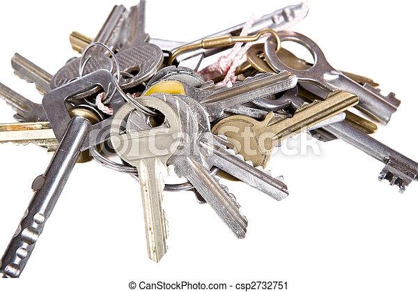 bunch of keys - csp2732751