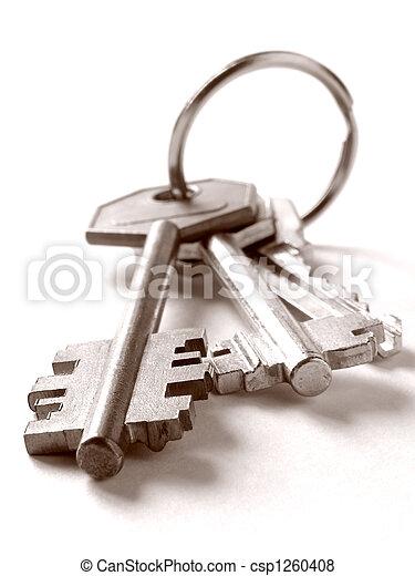 bunch of keys - csp1260408