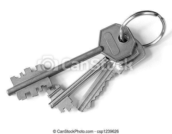 bunch of keys - csp1239626