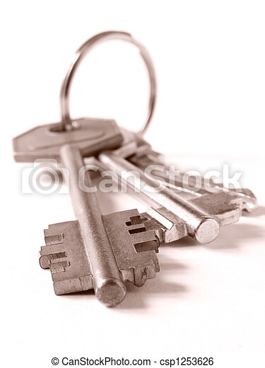 bunch of keys - csp1253626