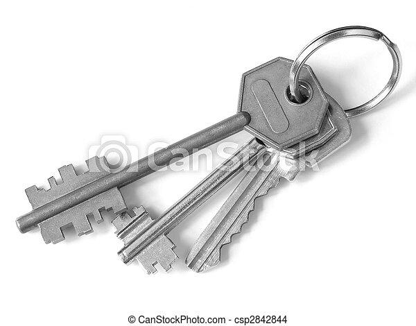 bunch of keys - csp2842844
