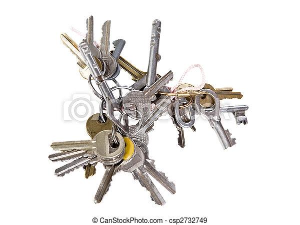 bunch of keys - csp2732749