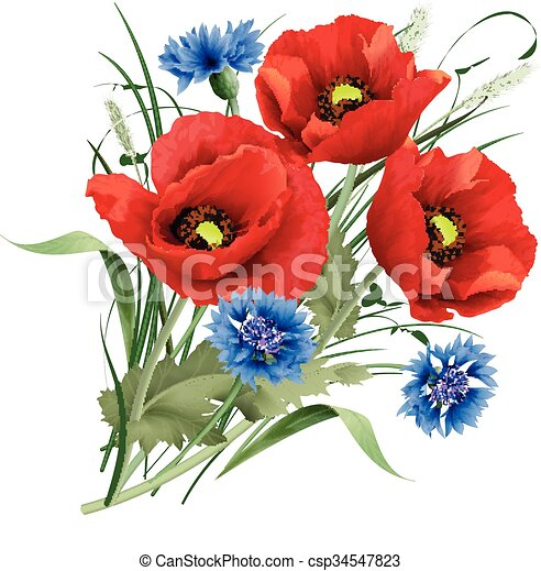 Bunch of red poppy flower blue cornflakes and hares foot clover vector illustration bunch of red poppy flower with green leaves blue cornflakes and hares foot clover mightylinksfo