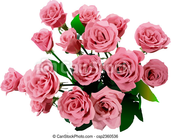Bunch of roses. Vector illustration - csp2360536