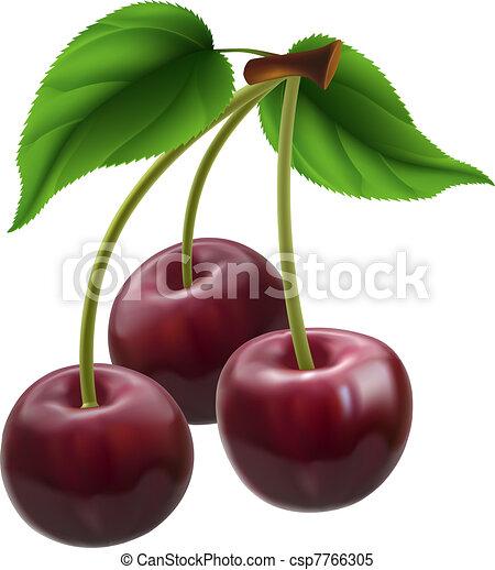 Bunch of three cherries - csp7766305
