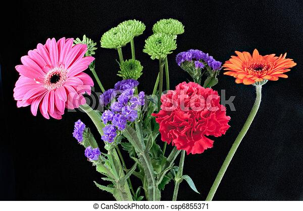 Bunch of vibrant flowers - csp6855371