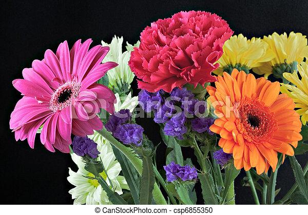Bunch of vibrant flowers - csp6855350