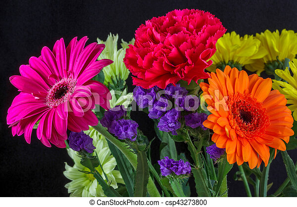 Bunch of Vivid Coloured Flowers - csp43273800