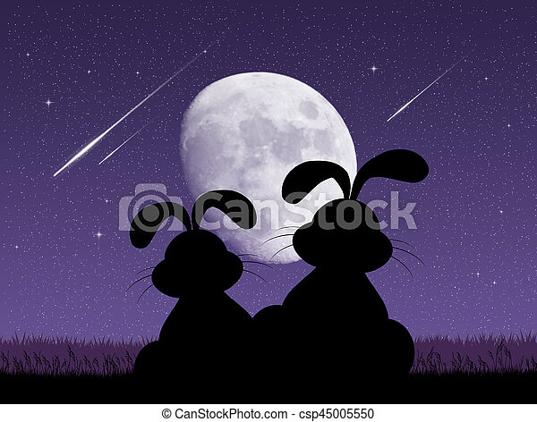 bunnies looking the shooting stars - csp45005550