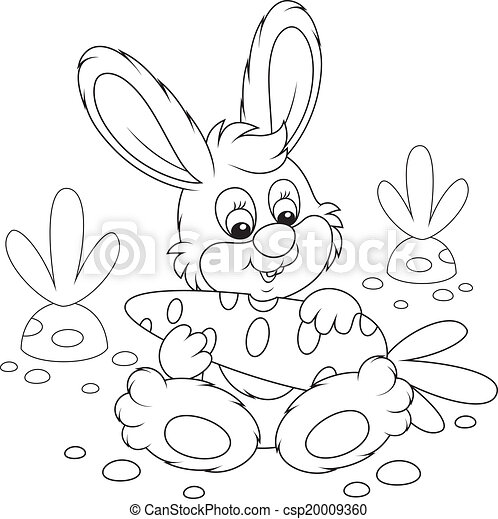 Bunny with a cabbage - csp20009360