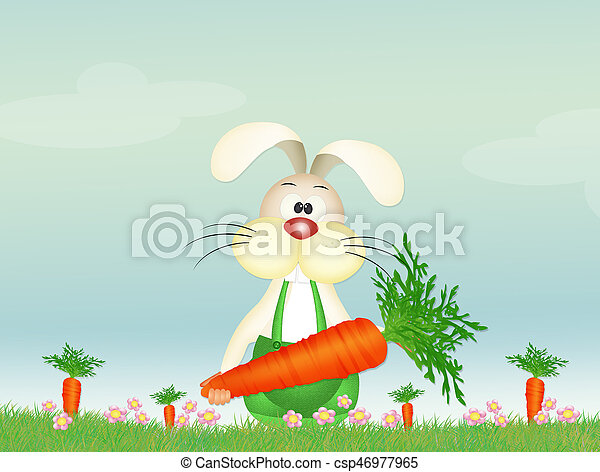 bunny with carrot - csp46977965