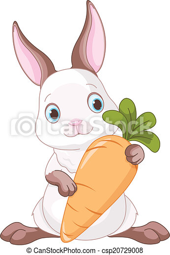 Bunny with Carrot  - csp20729008