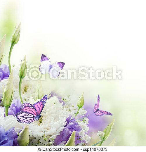 buquet, borboleta, cor-de-rosa, branca, nupcial, flores - csp14070873