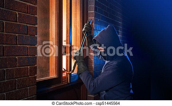 House Robber