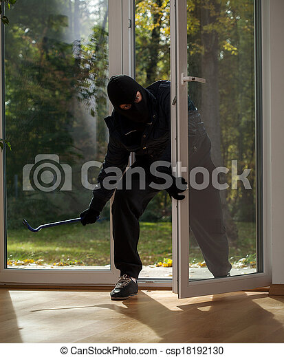 Burglary to home on the suburbs - csp18192130