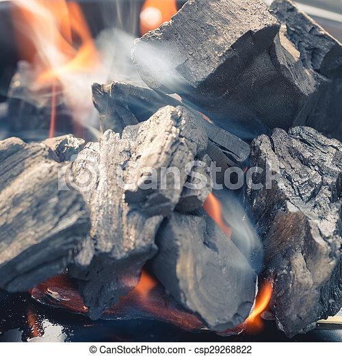 Burning Charcoal - csp29268822