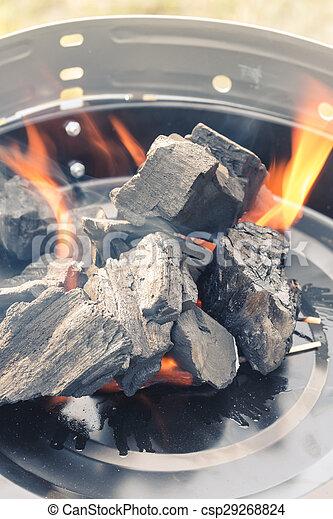 Burning Charcoal - csp29268824