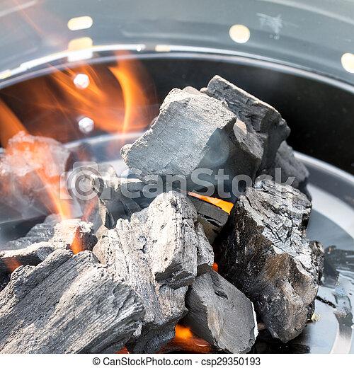 Burning Charcoal - csp29350193