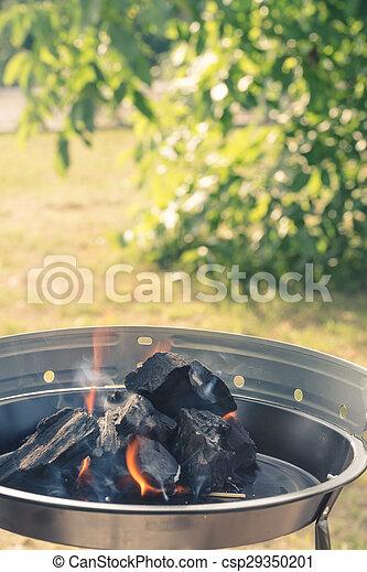 Burning Charcoal - csp29350201