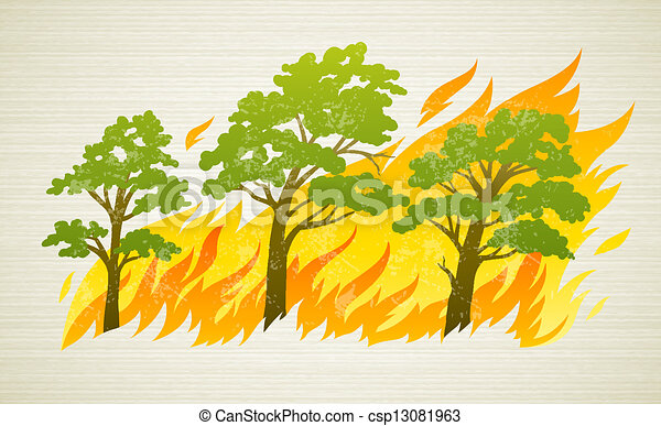 burning forest trees in fire disaster - csp13081963