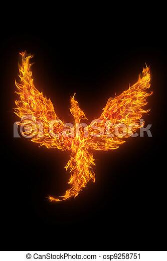 burning phoenix isolated over black background - csp9258751