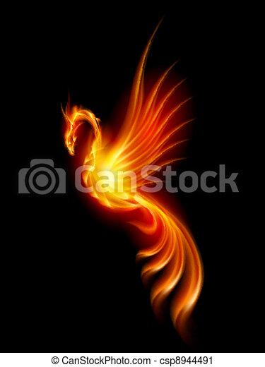 Burning phoenix - csp8944491