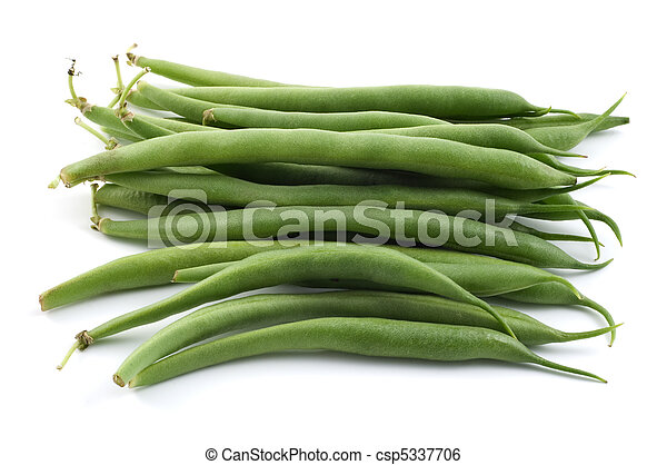 Bush beans - csp5337706