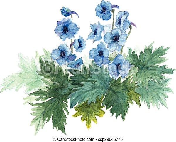 Bush blue anemones.  - csp29045776