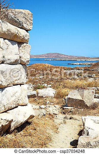 bush in delos greece the historycal acropolis and old ruin site - csp37034248