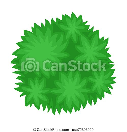 Bush. View from above. Vector illustration on a white background. - csp72898020
