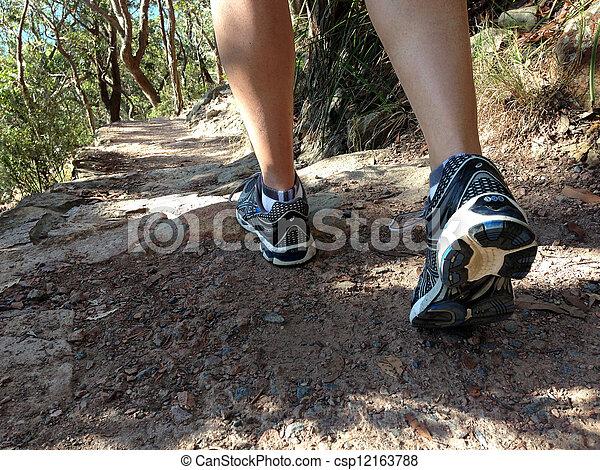 Bush walking  - csp12163788