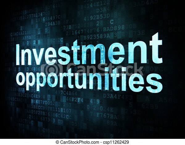 Business concept: pixelated words Investment opportunities on digital screen, 3d render - csp11262429