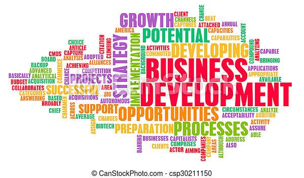 Business Development - csp30211150