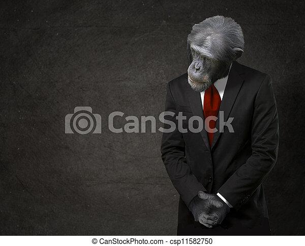 Business Monkey In Formal Attire - csp11582750