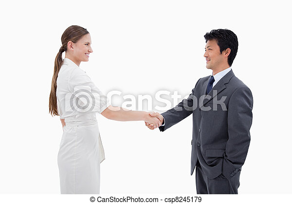 Business people shaking hands - csp8245179